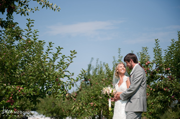 maine apple orchard wedding