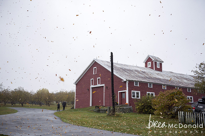 maine barn wedding at maple rock farm in parsonsfield maine photographed by jordan moody for brea mcdonald photography rustic barn wedding maine wedding new england wedding maine fall wedding
