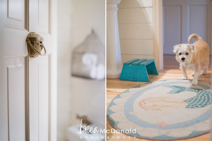style me pretty living feature with sara fitz photographed by brea mcdonald photography coastal maine lifestyle photography maine home and style